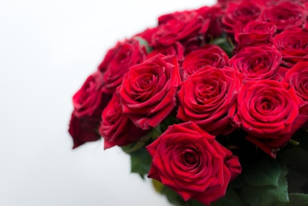 """Raudonų rožių """"Red Naomi"""" žiedai"""