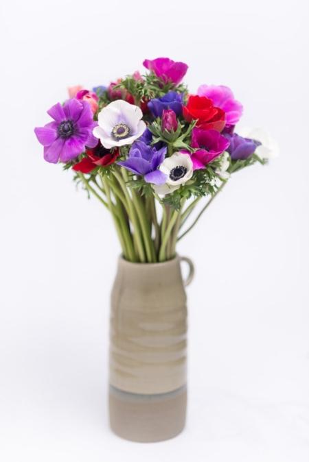 Anemonai vazoje