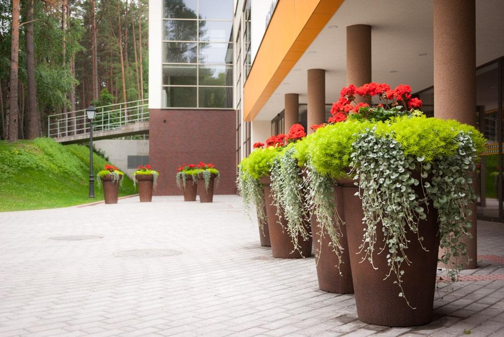 Lauko gėlių vazonai - Eglės sanatorija Birštone