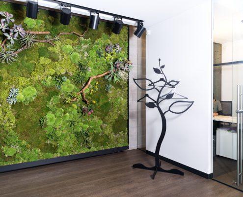 Samanų paveikslas Nojaus sėklų biure (kampu)