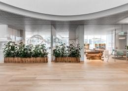 Interjero dekoras gėlėmis Makaliaus biure Vilniuje