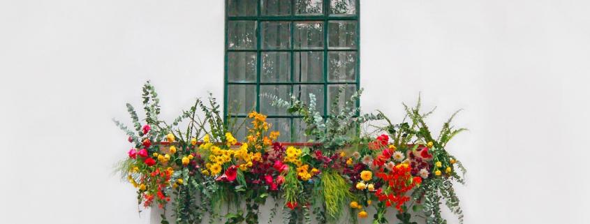 Sodo rojus balkone